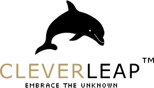 Clever Leap - embrace the unknown